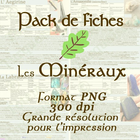 Pack fiches