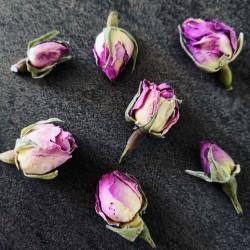 Sept bourgeons de rose ~ Féminin sacré