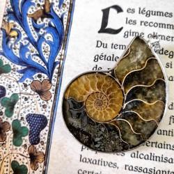 Pendentif d'ammonite ~ Vies antérieures