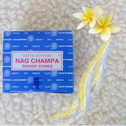 Nag Champa en cône (Satya) ~ Joie